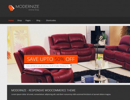 modernizr_theme_slider1